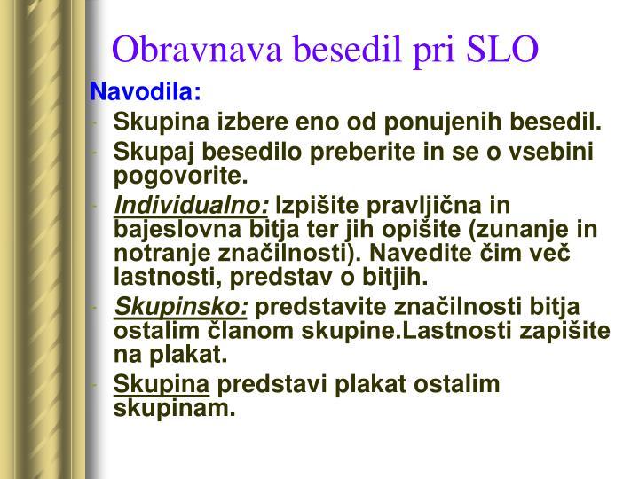 Obravnava besedil pri SLO