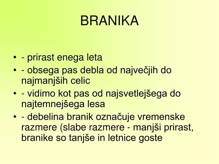 BRANIKA