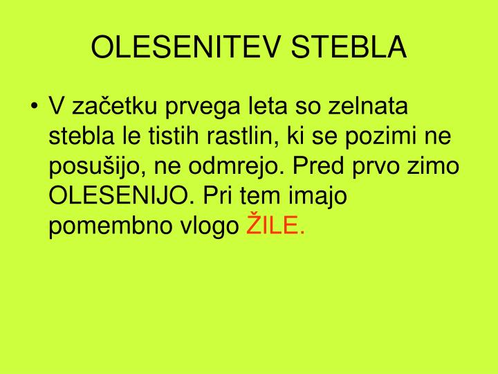 OLESENITEV STEBLA
