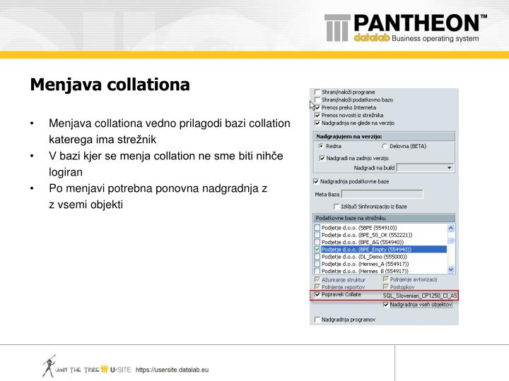 Menjava collationa