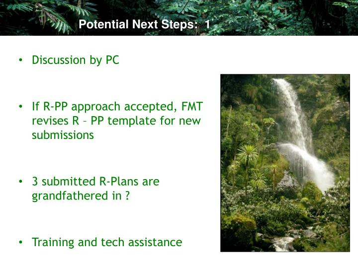 Potential Next Steps:  1