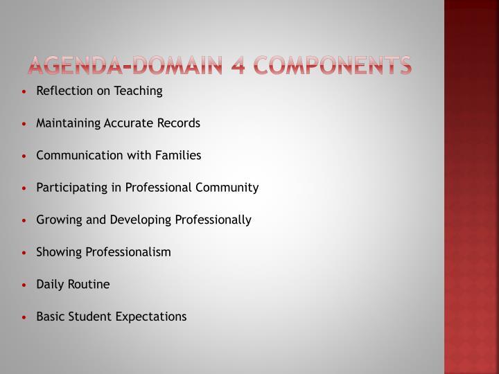 Agenda-Domain 4 Components