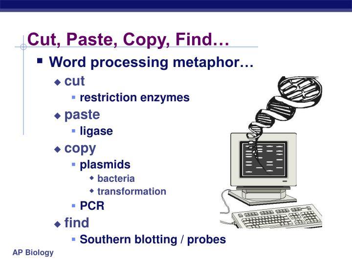 Cut, Paste, Copy, Find…