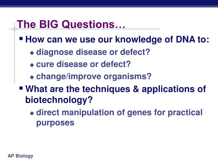 The BIG Questions…