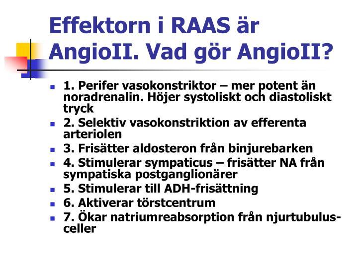 Effektorn i RAAS är AngioII. Vad gör AngioII?