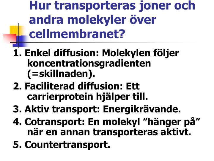 Hur transporteras joner och andra molekyler över cellmembranet?