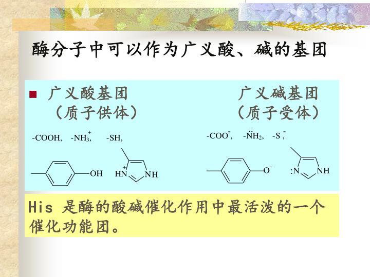 酶分子中可以作为广义酸、碱的基团