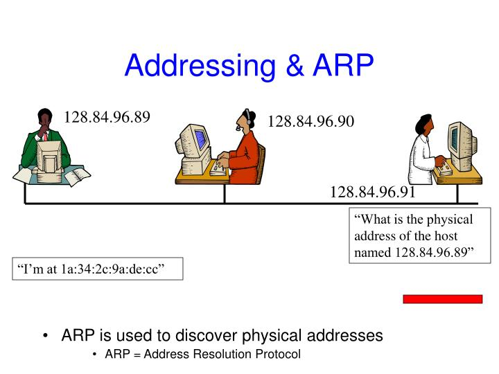 Addressing & ARP