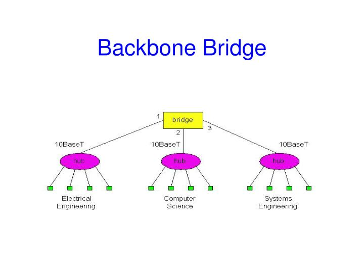 Backbone Bridge