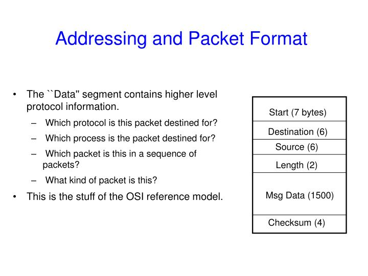 Addressing and Packet Format