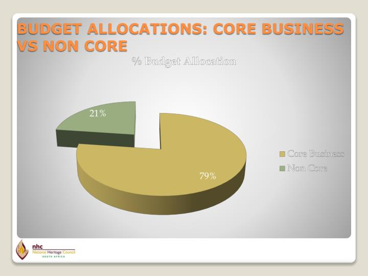 BUDGET ALLOCATIONS: CORE BUSINESS VS NON CORE