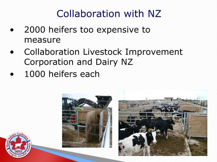 Collaboration with NZ