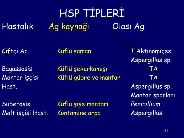 HSP TİPLERİ