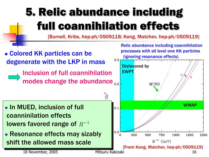 5. Relic abundance including