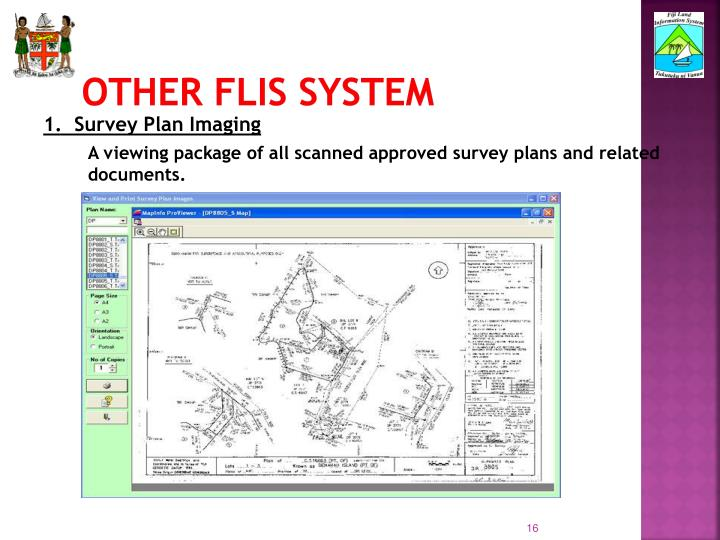 Other FLIS System