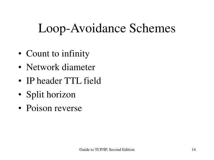 Loop-Avoidance Schemes