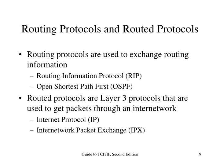 Routing Protocols and Routed Protocols