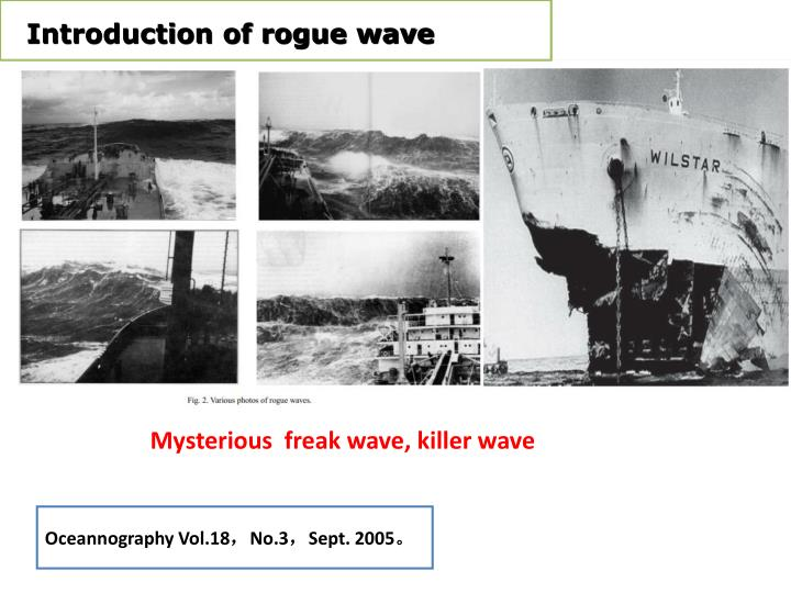 Introduction of rogue wave