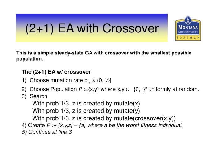 This is a simple steady-state GA with crossover with the smallest possible population.