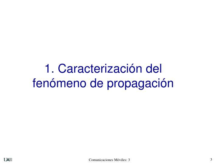 1. Caracterización del fenómeno de propagación