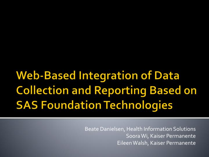 Beate Danielsen, Health Information Solutions