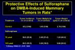 protective effects of sulforaphane on dmba induced mammary tumors in rats