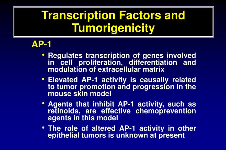Transcription Factors and Tumorigenicity