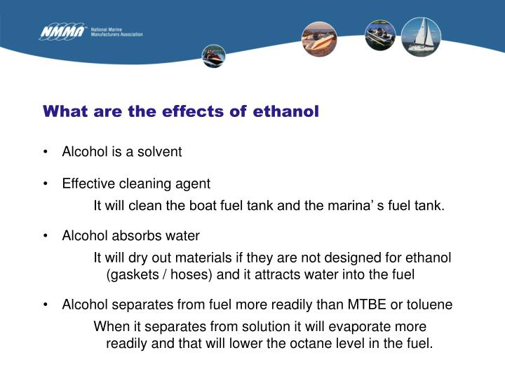 What are the effects of ethanol