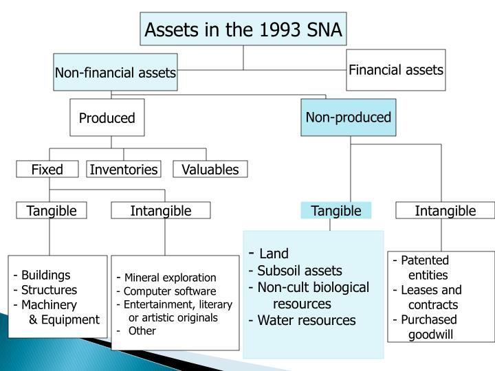 Assets in the 1993 SNA