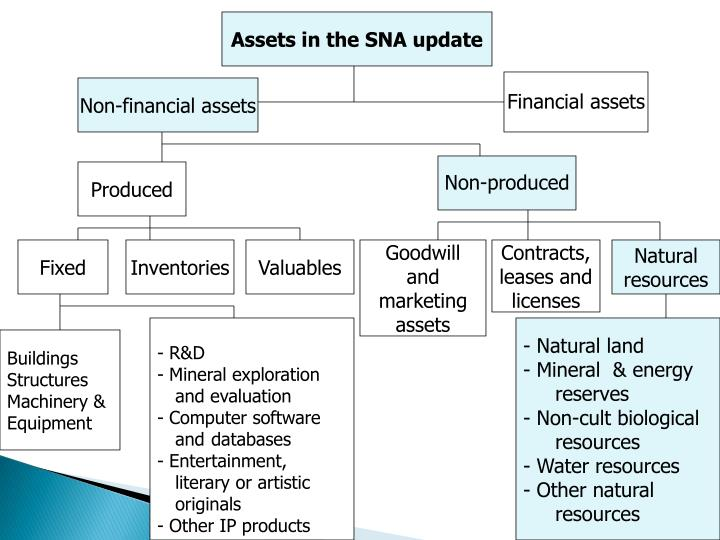 Assets in the SNA update
