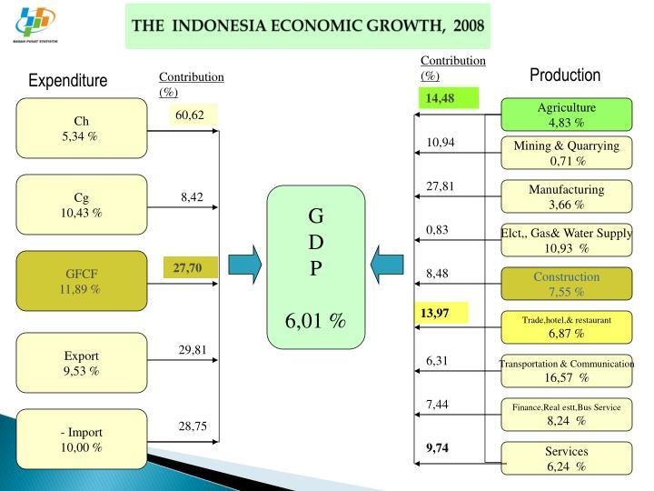 THE  INDONESIA ECONOMIC