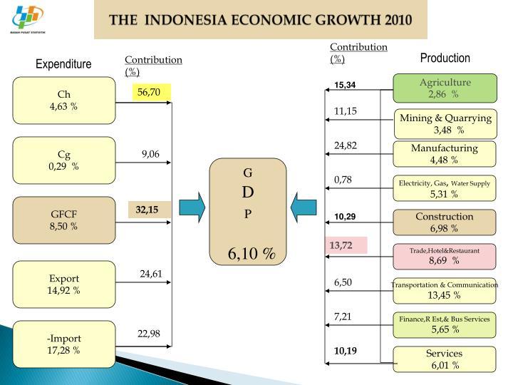 THE  INDONESIA ECONOMIC GROWTH 2010