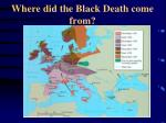 where did the black death come from