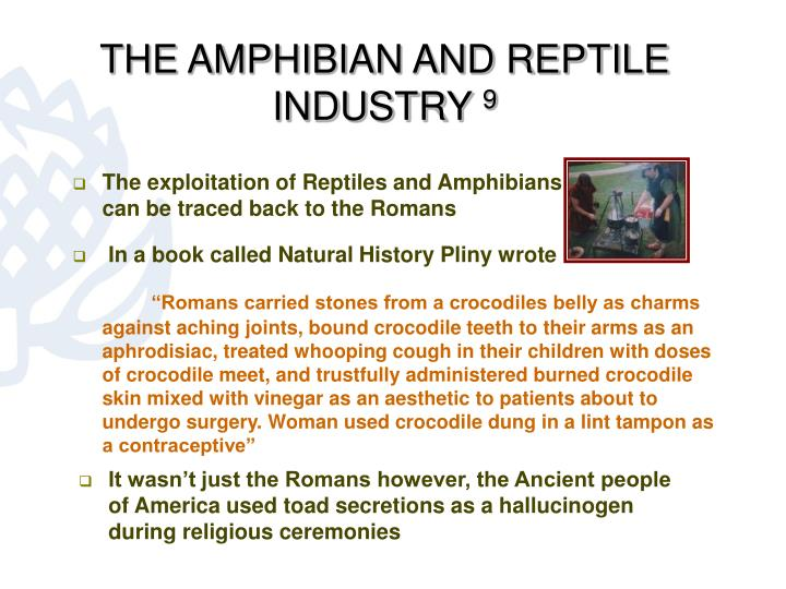 THE AMPHIBIAN AND REPTILE INDUSTRY
