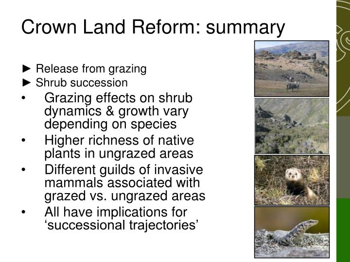 Crown Land Reform: summary