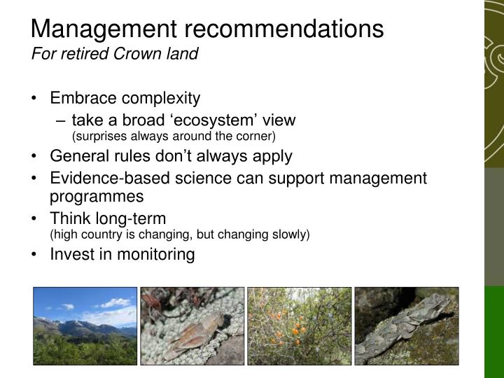 Management recommendations