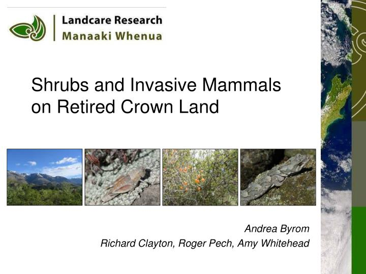 Shrubs and invasive mammals on retired crown land