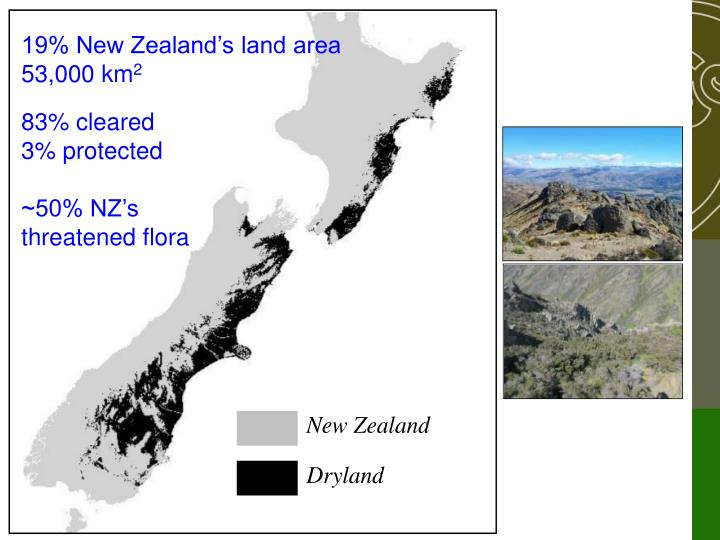 19% New Zealand's land area