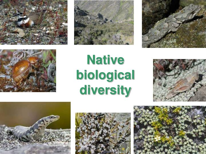 Native biological diversity
