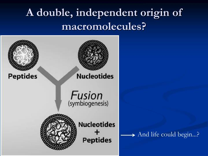 A double, independent origin of macromolecules?