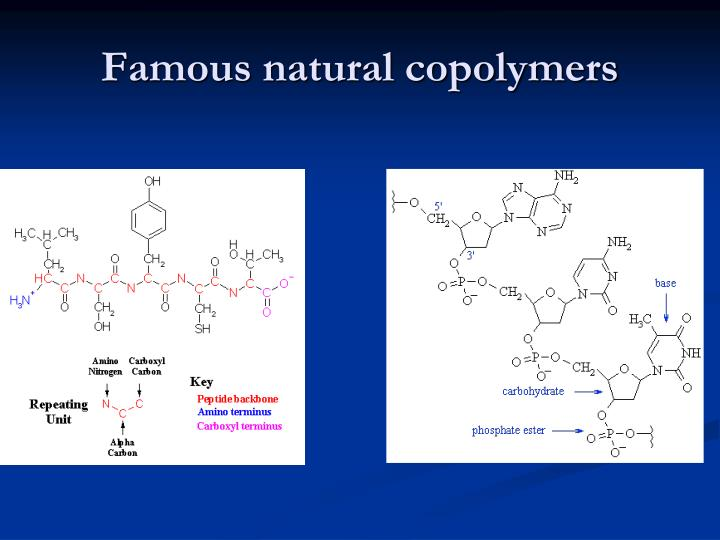 Famous natural copolymers