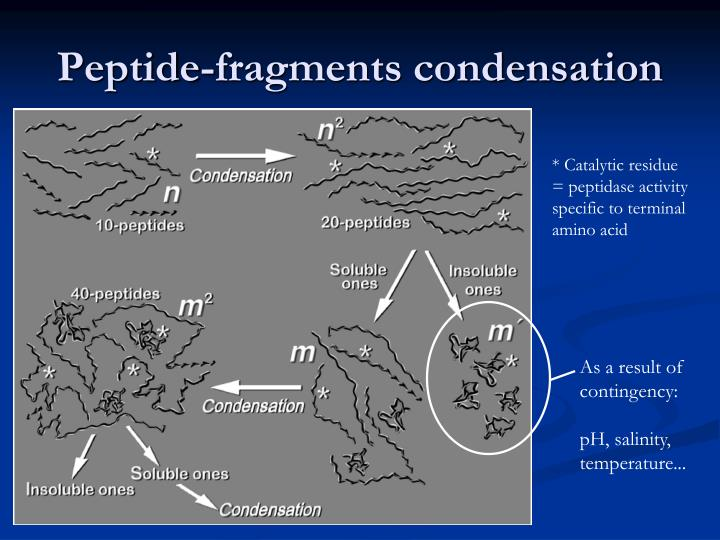 Peptide-fragments condensation