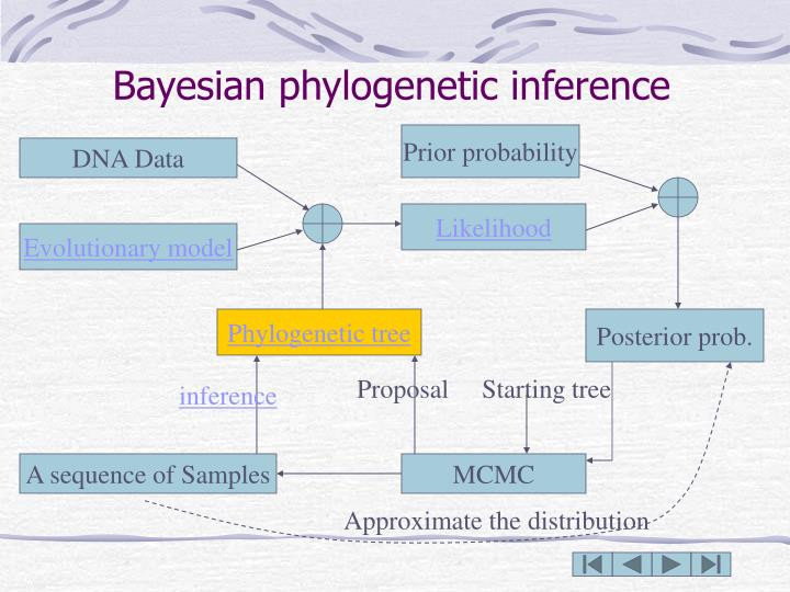 Bayesian phylogenetic inference