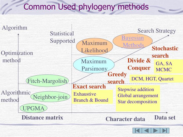Common Used phylogeny methods