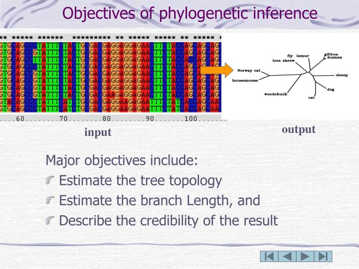 Objectives of phylogenetic inference