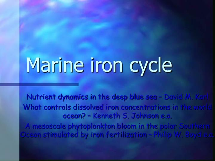 Marine iron cycle