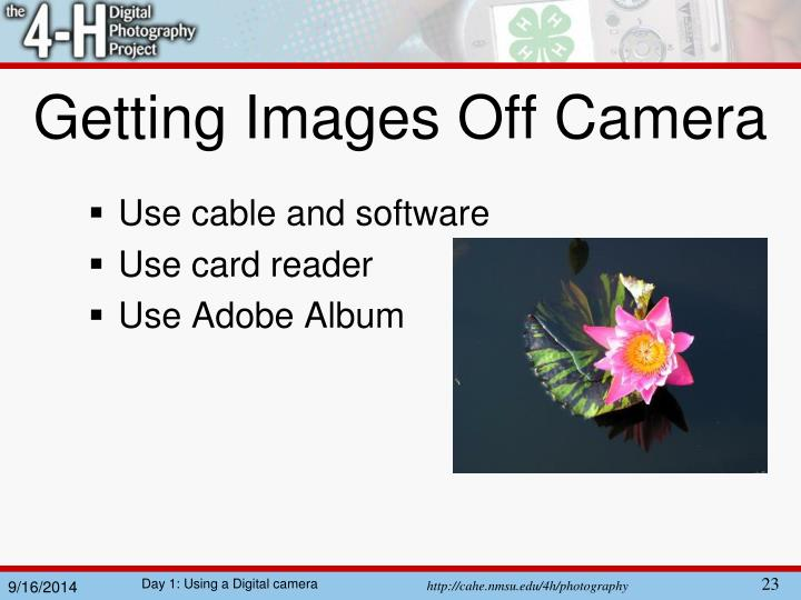 Getting Images Off Camera
