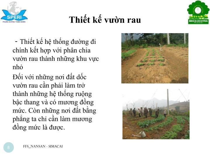 Thiết kế vườn rau