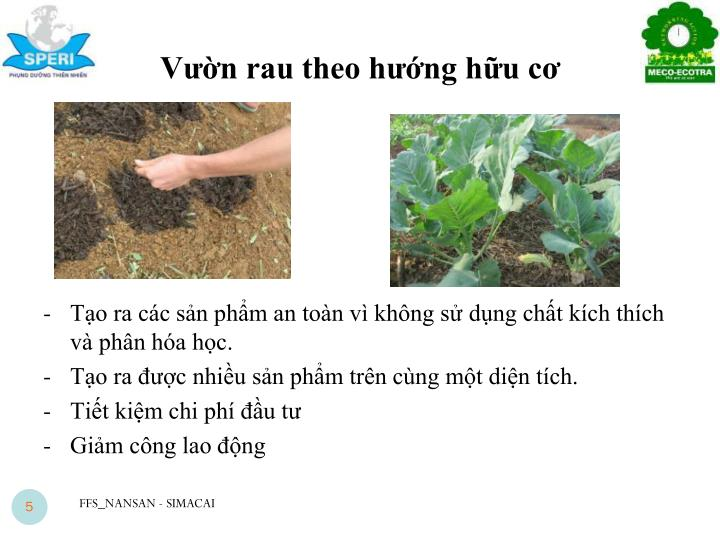 Vườn rau theo hướng hữu cơ