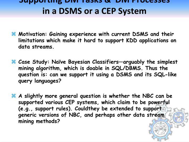Supporting DM Tasks &  DM Processes